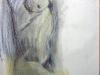 adonis_7_pastel_34wx35h